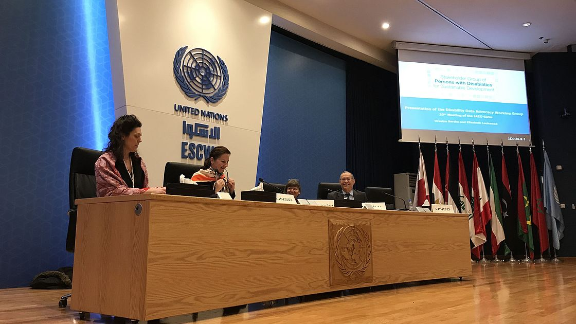 CBM and IDA presented at the 9th IAEG-SDGs meeting